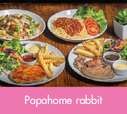 Papahome Rabbit
